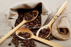 Coffee beans in a spoons. Stock Image