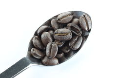 Coffee beans in a stainless steel spoon. Royalty Free Stock Photography