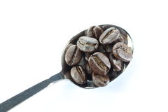 Coffee beans in a stainless steel spoon. Stock Images