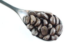Coffee beans in a stainless steel spoon. Royalty Free Stock Images