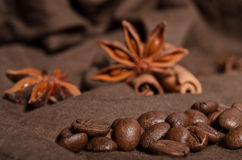 Coffee beans and star anise Stock Images