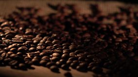 Coffee beans with star anise on barrel, cam moves to the right, shadow stock footage