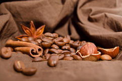 Coffee beans and star anise, cinnamon Stock Photography