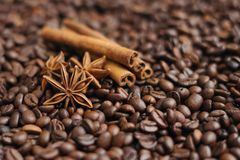 Coffee beans, star anise and cinnamon sticks. Close up royalty free stock photo