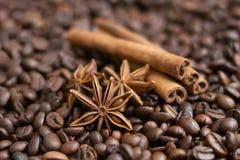 Coffee beans, star anise and cinnamon sticks. Selective focus stock photo