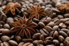 Coffee beans and star anise royalty free stock image