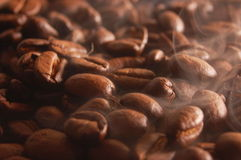 Coffee beans with steam Stock Images