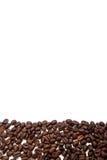 Coffee beans stripe on white background Stock Photos