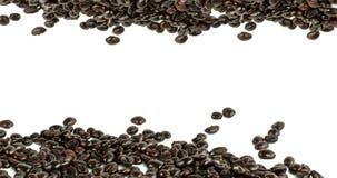 Coffee beans stripes isolated i Stock Photos