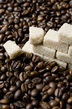 Coffee beans and sugar Stock Images