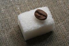 Coffee beans on the sugar Stock Photos