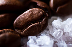 Coffee beans on sugar granules Royalty Free Stock Photography