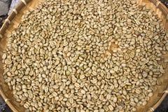 Coffee beans on Sun exposure Stock Photo