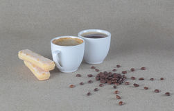 Coffee beans sun with savoiardi biscuits and two cup of cofee. Sun beans with coffee cups and biscuits royalty free stock images