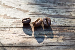 Coffee beans. Sweet morning coffee with your favorite treat Stock Images