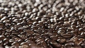 Coffee beans on the table background blurred abstract blurred. Coffee beans on the table background blurred abstract background blurred abstract background stock image