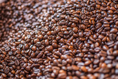 Coffee beans textued background abstract royalty free stock images