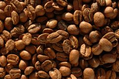 Coffee beans texture Stock Photography