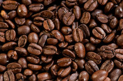 Coffee beans texture. Abstract background Royalty Free Stock Image
