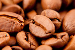 Coffee beans texture. With verry shallow focus Stock Photography