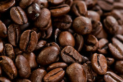 Coffee beans texture. Abstract photo Stock Photo