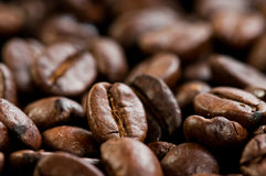 Coffee beans texture. Close up Stock Image