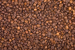 Coffee beans texture Royalty Free Stock Image