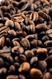 Coffee beans texture. Stock Photo