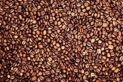 Coffee beans texture Stock Photos