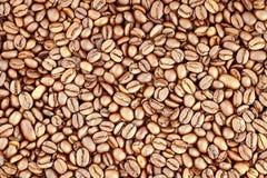 Coffee beans. Stock Image