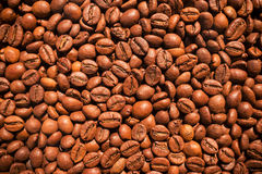 Coffee beans texture Stock Images