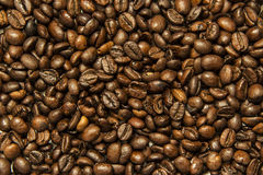 Coffee beans texture Stock Photo