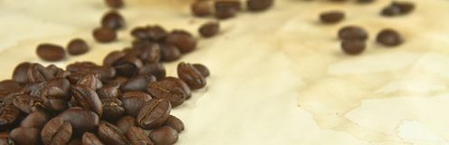 Coffee Beans on a Texture of Stained Paper Stock Images