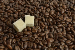 Coffee beans and two pieces of sugar Stock Images