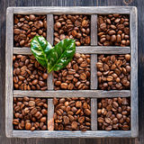 Coffee beans in vintage box Royalty Free Stock Image