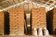 Coffee beans warehouse Royalty Free Stock Images