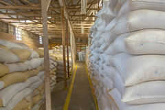 Coffee beans warehouse Stock Photos