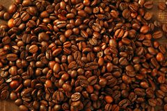Coffee beans in warm golden brown background Stock Photography