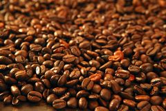 Coffee beans in warm golden brown background Royalty Free Stock Images