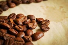 Coffee beans in warm tones royalty free stock photo