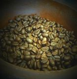 Coffee beans. Stock Photography