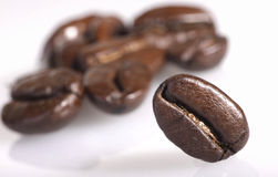 Coffee beans on white background. Small group of coffee beans with one bean in sharp focus on white background Stock Photos