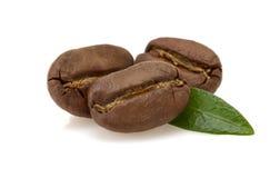 Coffee beans on white Royalty Free Stock Photos