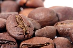 Coffee beans are  on white background. Royalty Free Stock Photography