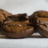 Coffee. Beans on the white background Stock Image
