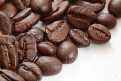 Coffee beans. On the white background stock photos