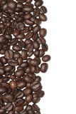 Coffee beans. On white background stock photos