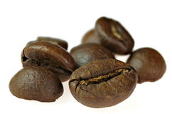 Close up of fresh coffee beans on white background Royalty Free Stock Photography