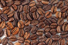 Coffee beans on white background. The coffee beans on white background Stock Photography