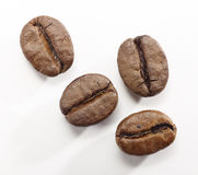 Coffee beans on a white background with clipping path Royalty Free Stock Images